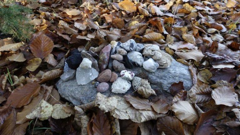 steine-herbstlaub-symbolisch-fuer-preisgetaltung-naturcoaching